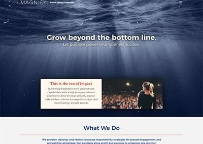 Magnify Impact Website