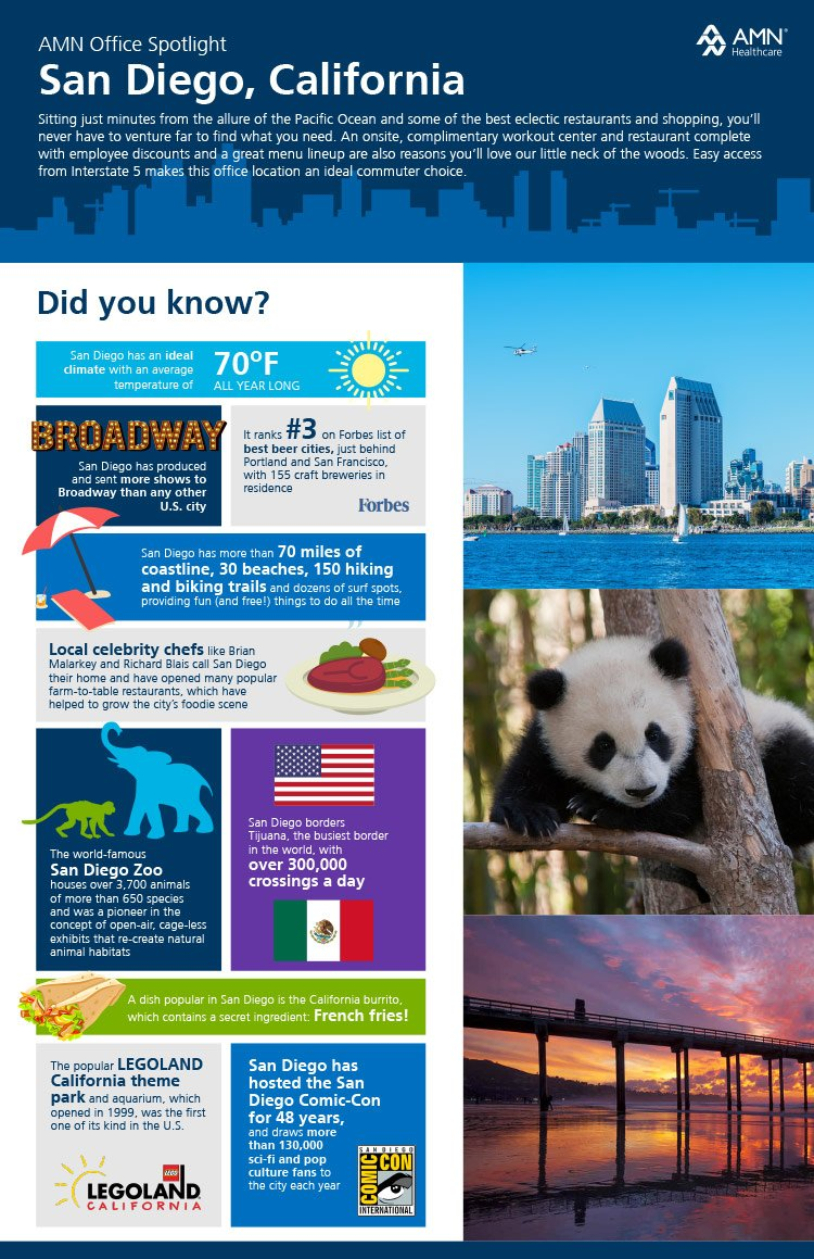 AMN location infographic Firebrand Design & Business Solutions in Safety Harbor, FL